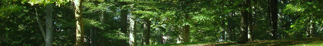 Ogliastra Natura